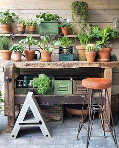 Oude werkbank als verpottafel, mooi onder veranda