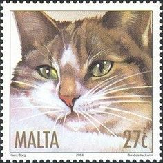 Stamp: Brown Tabby (Felis silvestris catus) (Malta) (Cats) Mi:MT 1320,Yt:MT 1287,Sg:MT 1350,WAD:MT007.04 Art Postal, Postage Stamp Art, Stamp Catalogue, Cat Posters, Vintage Stamps, Malta, Mail Art, Stamp Collecting, Pet Birds