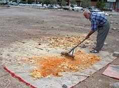 Atık ekmekleri gelire dönüştürüp, yoksullara yardım ediyor