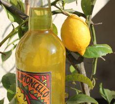 LIMONCELLO (10 citrons, 1 litre d'alcool à 45°, 1 litre d'eau, 500 g de sucre) - MACERATION : 20 jours - REPOS : 30 jours