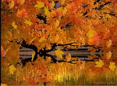 autumn gif photo: AUTUMN FALLING LEAVES autumn-html.gif