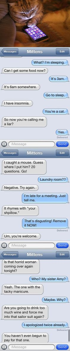 Text messages from a cat…