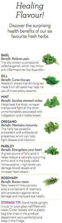 Discover the health benefits of fresh herbs and find out the best ways to incorporate them into your meals every day.