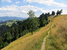 Unterwegs auf dem Napf. Rapunzel, Hiking, Country Roads, Day, Outdoor, Road Trip Destinations, Alps, Vacations, Traveling