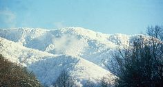 In the Smokies, days can be sunny with high temperatures of 65° or snowy with highs in the 20s. Jacket or no jacket, it is so beautiful.