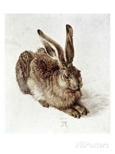 The Young Hare Giclee Print by Albrecht Dürer - at AllPosters.com.au