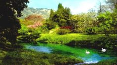 Il Giardino di Ninfa è considerato Monumento Naturale della Repubblica Italiana