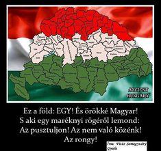 Hungary, History, Ravens, War, Pet Dogs, Historia, Raven, Crows
