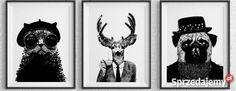 70 zł: Oferuję zakup ilustrowanych plakatów autorskich. Do dekoracji pomieszczeń, pokoi, salonów, kuchni i sypialni. A także do mieszkań i lokali pokazowych. Plakaty najlepiej nadają się do powierzchni o charakterze