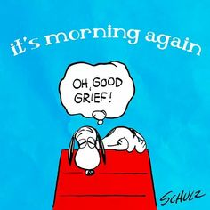 Snoopy, it's morning again, good grief Charlie Brown Quotes, Charlie Brown And Snoopy, Good Morning Snoopy, Morning Humor, Morning Cat, Morning Board, Snoopy Images, Snoopy Pictures, Peanuts Cartoon
