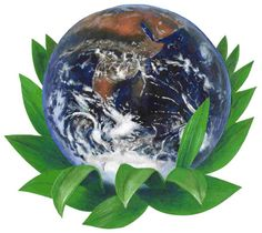 stop global warming Heaven On Earth, Global Warming, Health And Wellness, Planets, Globe, Lotus, Healthy, Products, Speech Balloon