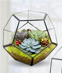 European mini greenhouse glass micro landscape Novel combination potted geometric flower pot Meaty plant