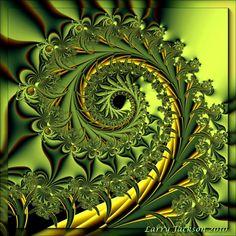 Garden Variety Spiral by - pretty fern-like fractal Art Fractal, Fractal Images, Fractal Design, Fractals In Nature, Spirals In Nature, Patterns In Nature, Textures Patterns, Photographie Macro Nature, Fibonacci Spiral