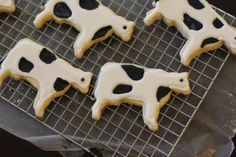 PARY COWS | ... polka dot cows…A Polka Dot Cow Party….we may do that next year