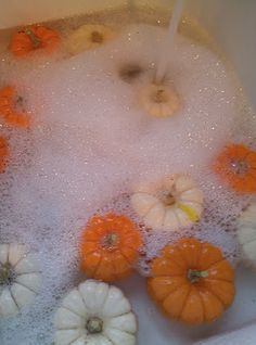 Quick Trick to Make Your Pumpkins Last! Wash with bleach to remove all dirt & rot causing bacteria