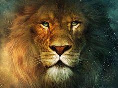 Lion (1024x768) Wallpaper, Animals, lion, Aslan, Lions, Tigers, Kaplan, Puma, Hayvan, Kedigiller, Mammalia, Memeli, Carnivora, Etçil, Felidae, Kedigiller, Pantherinae, Büyük kediler, Arslan, Panthera leo, Panthera, Löwe