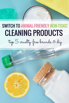 Switch to a #crueltyfree houshold! It's easy! 5 best common brands that don't test on animals.