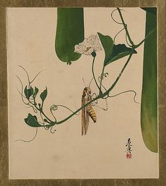 Lacquer Paintings of Various Subjects: Grasshopper on Gourd Vine Shibata Zeshin (Japanese, 1807–1891) Period: Meiji period (1868–1912) Date: 1882 Culture: Japan Medium: Lacquer on paper