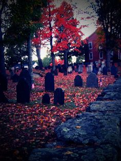 I love the colors in this cemetery.