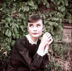 Audrey Hepburn photographed by Milton H. Greene on the set of War and Peace in Rome, Italy, 1955. Bloglines (2.7K)