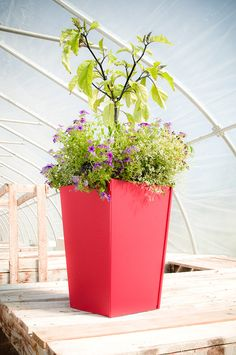 Tapered on all four sides, this modern flower pot has a capacity of 11 gallons. It is made from recycled plastic, which means it will take you through many growing seasons and carry your flowers or plants through even the most extreme weather conditions. This outdoor flower pot is also great for storing and organizing odds and ends, from dog toys to lawn tools. #Loll #LollDesigns #recycledplastic #sustainablefurniture #modernoutdoorfurniture #outdoorliving #patioinspiration #backyardgoals Outdoor Planter Boxes, Garden Planters, Planter Pots, Sustainable Furniture, Modern Outdoor Furniture, Outdoor Flowers, Extreme Weather, Weather Conditions, Dog Toys