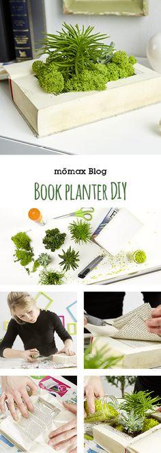 Book planter DIY , tolle indoor gardening Idee mit alten Büchern!