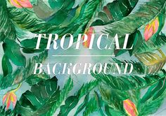 Watercolor tropical background by Romantic shop on @creativemarket