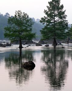Beavers Bend In Broken Bow, Oklahoma Broken Bow Cabins, Broken Bow Lake, Broken Bow Oklahoma, Oklahoma Usa, Beavers Bend State Park, State Parks, Oh The Places You'll Go, Places To Travel, Beaver Bend