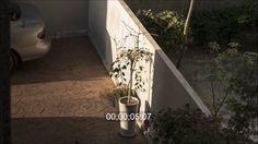 timelapse native shot :14-10-28 망원동 03 4500x2533 29-97f_1