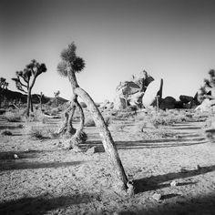 Black And White Landscape, Black White, Panorama Camera, Landscape Photography, Art Photography, All Pictures, Black And White Photography, Fine Art Paper, Deserts