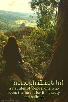 unusual travel words - nemophilist
