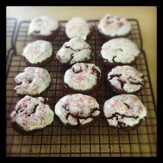 Chocolate iced cookies