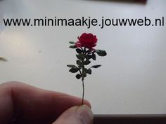 How to make a Rose Dollhouse Miniature Tutorials, Diy Dollhouse, Dollhouse Miniatures, Paper Art, Paper Crafts, Minis, Mini Plants, Miniature Plants, Types Of Flowers