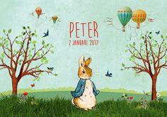 Geboortekaartje jongen - Peter - Pimpelpluis - https://www.facebook.com/pages/Pimpelpluis/188675421305550?ref=hl (# vintage - retro - Peter Rabbit - luchtballon - vrolijk - kleurrijk - gras - boom - natuur - vlinder - vogel - ballon - origineel)