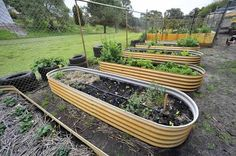 http://resources2.news.com.au/images/2009/10/24/1225790/922034-best-school-gardens.jpg