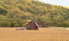 Yellow River area by Denise Brooks-Stone. #Fall in #Iowa.