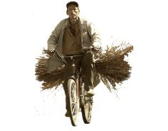 Escalalatina | ZoomSeñorBicicletaPaja