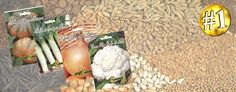venda de sementes http://www.seeds.pt/