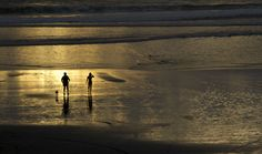 Port Waikato people and dog by Janet Keen Photographer Beach Scenes, New Zealand, Mosaic, Dog, Artist, Artwork, People, Photography, Painting