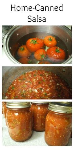 Home Canned Salsa made with fresh tomatoes and chiles