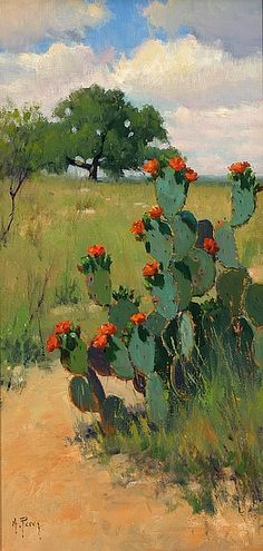 Red Blooming Cactus by Noe Perez - Greenhouse Fine Art