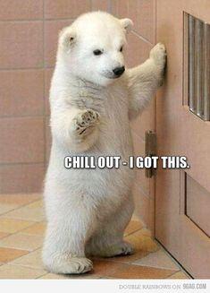Chill dude!