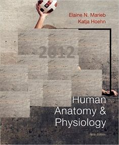 Fraud examination 5th edition solutions manual by albrecht free download free samples see more test bank human anatomy and physiology books a la carte 9th edition by elaine n fandeluxe Choice Image