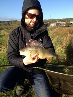 Perch on the fly from Kingcombe Lakes