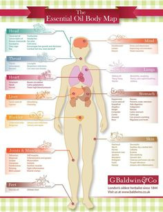 The Essential Oil Body Map