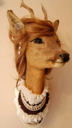 Bad Taxidermy << this one is actually quite lovely. I would have a tea party with this deer.