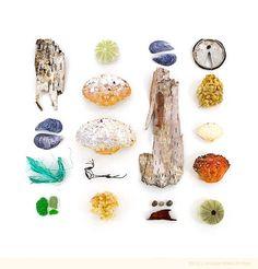 """""""The Bluffs, Bar Harbor, Maine; May 29, 2011."""" Beachcombing series No.34 by Jennifer Steen Booher"""