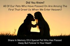 Its True All Pets Go To Heaven and they are among the first to greet us when we make our transition. It is amazing that at almost every event those who have departed will normally come through with their pets right by their side. Whether it be a Horse, Bird, Dog or Cat rest assured your pets that have passed are waiting close beside your loved ones on The Other Side and one day you too will be reunited with them as well    Tags: #Pets #Afterlife #Psychic #Inspiration #Heaven #DoYouBelieve