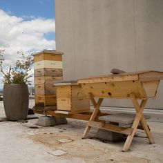 Do you live in a big city, or otherwise don't have room on the ground for your hives? Rooftop beekeeping is a GREAT alternative, especially because it elevates the bees' flight path away from neighbors or children. Just make sure to also provide a water source nearby!