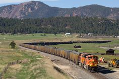https://flic.kr/p/HoZjJ5 | BNSF 9134 Spruce 22 May 16 | BNSF 9134 leads a northbound coal empty through Spruce, CO just north of Palmer Lake.  Well...finally!  I've been trying to shoot an ACe at this location for over a year now, and it finally came to be!  As far as I know, this was the only train moving in daylight from the evening prior to most of the morning on this particular day.  I saw it making its way north on ATCS, and with no other options to go for, I went to Spruce and hoped…
